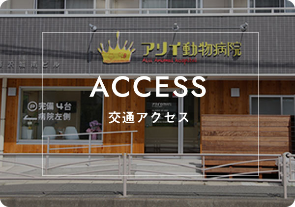 ACCESS 交通アクセス